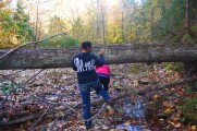 A fallen tree deters two friends from their path at Pinnacle Youth Park. Photo By Berkeley Lovelace Jr.