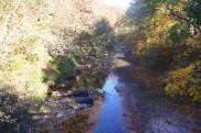A tiny river under a bridge at Pinnacle Youth Park. Photo By Berkeley Lovelace Jr.