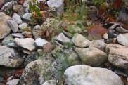 A close of shot of rocks at Pinnacle Youth Park. Photo By Berkeley Lovelace Jr.